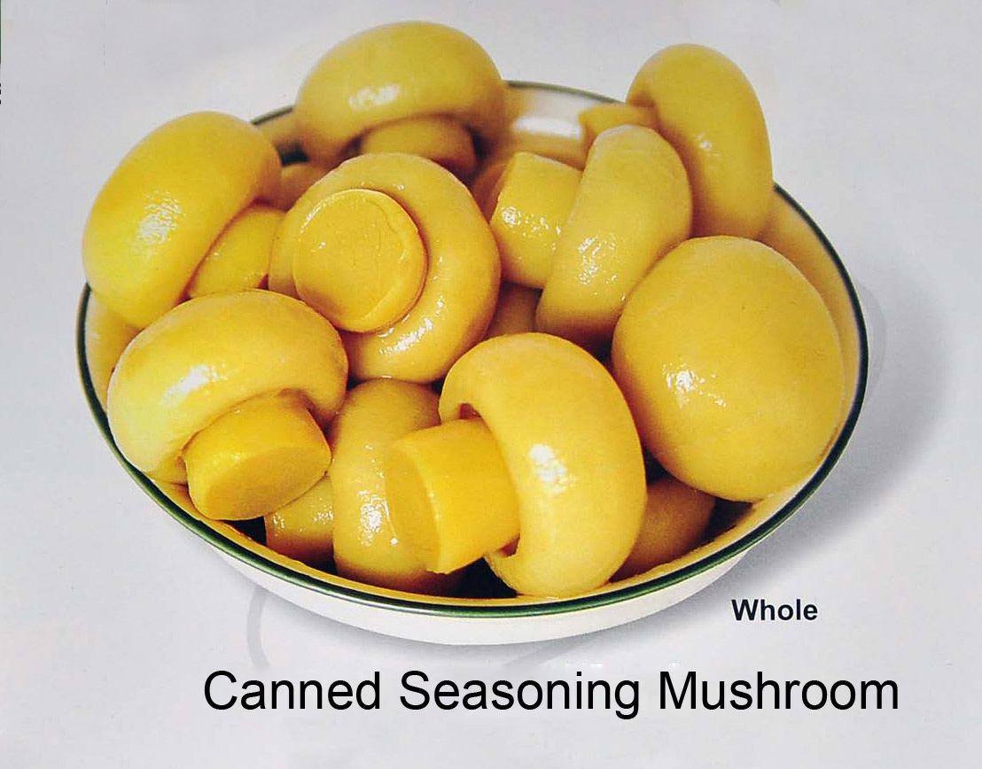 Canned Seasoning Mushroom